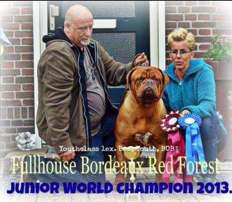 Zoon van Nashua Bordeaux Red Forest, Lizzy is kleindochter van Nashua Bordeaux Red Forest